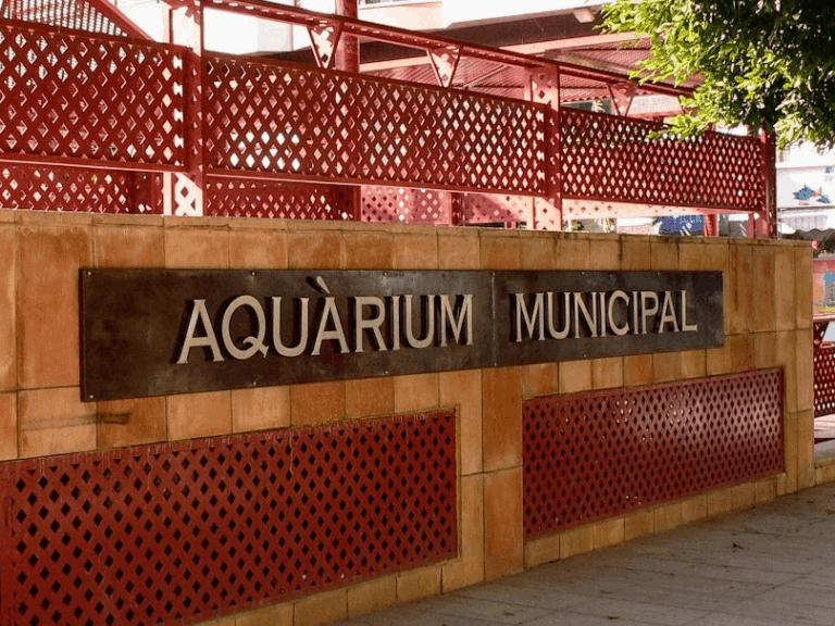 ACUARIO-SANTAPOLA_03-1
