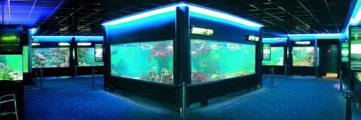 acuario municipal de santa pola