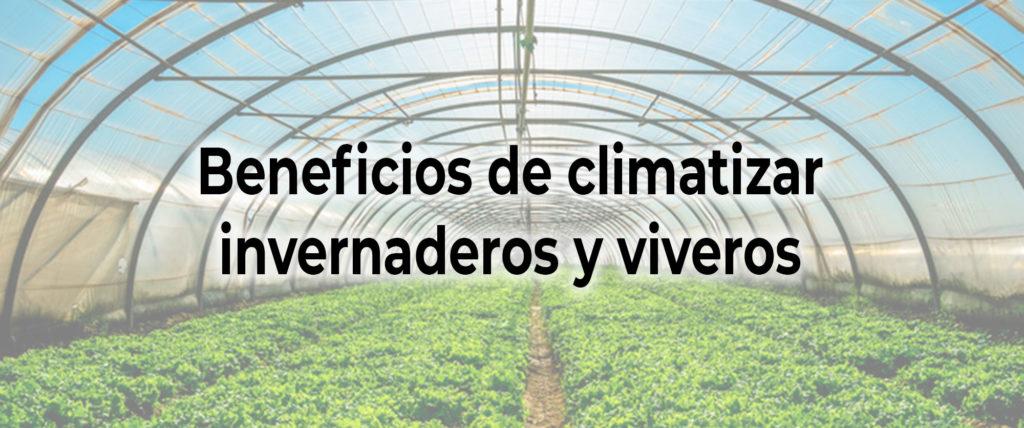 🍃 Beneficios de climatizar 💐 invernaderos y viveros